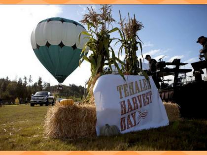 Harvest Festival at Tehaleh