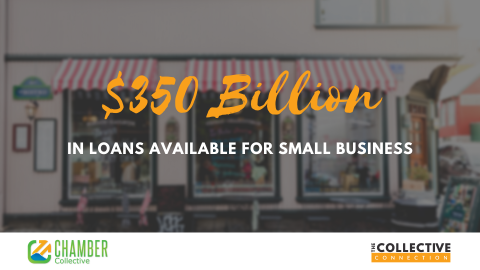 Small Business Administration Loans