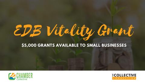 EDB Vitality Grant